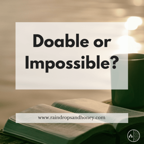 Doable or Impossible? | 3 Commands to Obey
